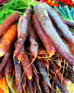 Carrots Blushing Purple